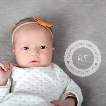 Baby Hadley | Columbus, OH Newborn Photography