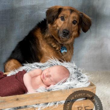 Newborn Baby Photography | Columbus, Ohio